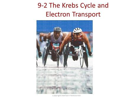 Copyright Pearson Prentice Hall 9-2 The Krebs Cycle and Electron Transport.