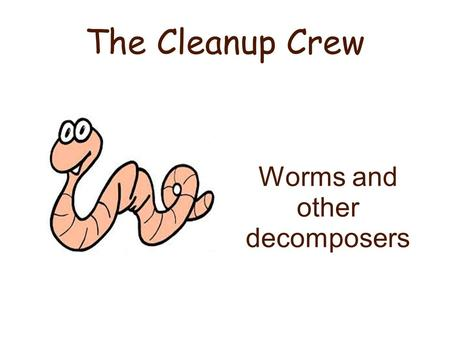 Worms and other decomposers