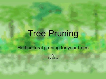 Tree Pruning Horticultural pruning for your trees By Paul Rios.