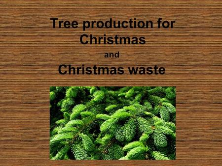 Tree production for Christmas and Christmas waste.
