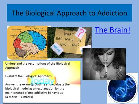 "biological model of addiction essay Constructs of addiction, as they emerge from the dominant disease model of  2  in the medical model the ""site"" of addiction is seen to reside in the biology of."