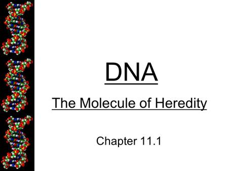 DNA The Molecule of Heredity Chapter 11.1. DNA - Deoxyribonucleic Acid Contains genetic information (genes) Strands of repeating molecules that make.