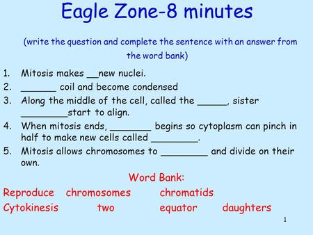 Eagle Zone-8 minutes (write the question and complete the sentence with an answer from the word bank) 1.Mitosis makes __new nuclei. 2.______ coil and.
