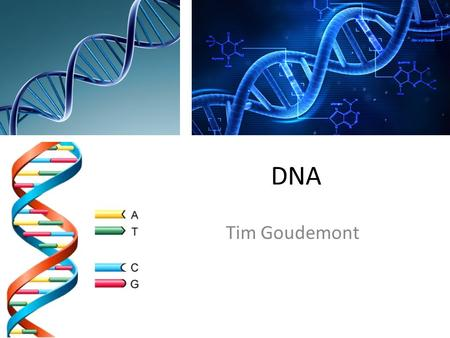 DNA Tim Goudemont. What is DNA DNA is a long molecule that contains our unique genetic code. Like a recipe book it holds the instructions for making all.