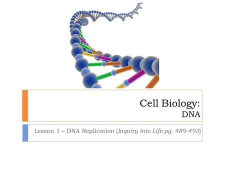 Cell Biology: DNA Lesson 1 – DNA Replication ( Inquiry into Life pg. 489-493 )
