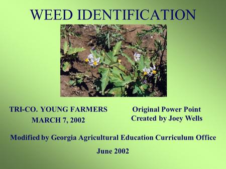 WEED IDENTIFICATION TRI-CO. YOUNG FARMERS MARCH 7, 2002 Modified by Georgia Agricultural Education Curriculum Office June 2002 Original Power Point Created.
