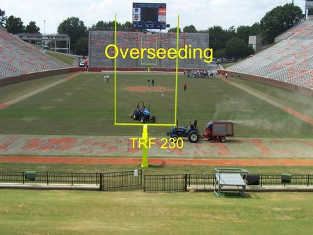 Overseeding TRF 230. Why Overseed Bermuda goes dormant Green color Traffic tolerance Economic reasons.