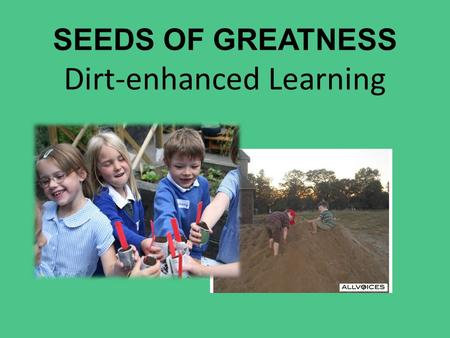 SEEDS OF GREATNESS Dirt-enhanced Learning. Can dirt be good for our kids (& us)? A new study shows that a bacteria commonly found in soil can help improve.