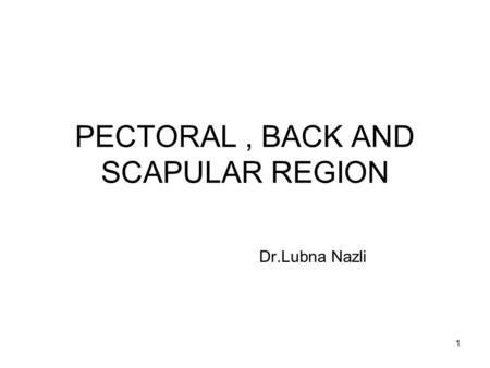 1 PECTORAL, BACK AND SCAPULAR REGION Dr.Lubna Nazli.