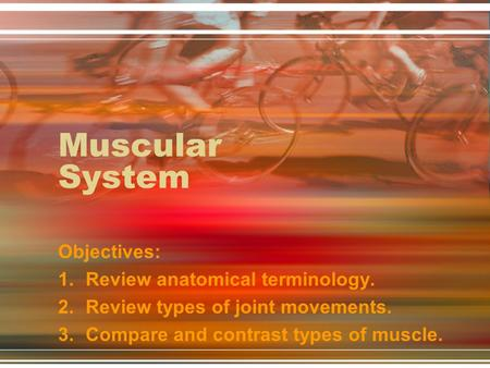 Muscular System Objectives: Review anatomical terminology.