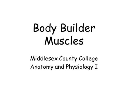 Middlesex County College Anatomy and Physiology I