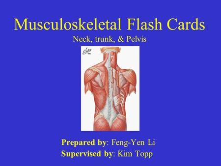 Musculoskeletal Flash Cards Neck, trunk, & Pelvis Prepared by: Feng-Yen Li Supervised by: Kim Topp.