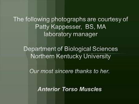 Our most sincere thanks to her. Anterior Torso Muscles