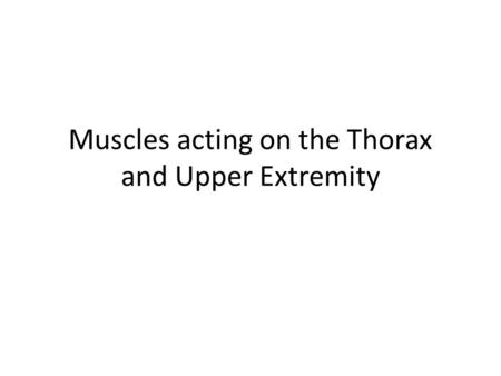 Muscles acting on the Thorax and Upper Extremity.