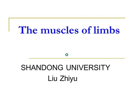 The muscles of limbs 。 SHANDONG UNIVERSITY Liu Zhiyu.
