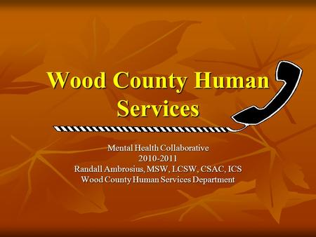 Wood County Human Services Mental Health Collaborative 2010-2011 Randall Ambrosius, MSW, LCSW, CSAC, ICS Wood County Human Services Department.