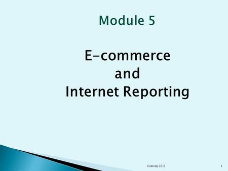 Module 5 E-commerce and Internet Reporting Convery 20131.