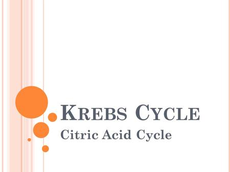 K REBS C YCLE Citric Acid Cycle. B EFORE THE CYCLE BEGINS : ► Pyruvate turned into acetate gives off CO 2 and causes NAD+ NADH ► Coenzyme A attaches to.