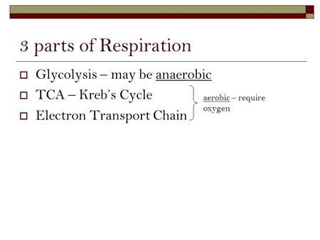 3 parts of Respiration  Glycolysis – may be anaerobic  TCA – Kreb's Cycle  Electron Transport Chain aerobic – require oxygen.