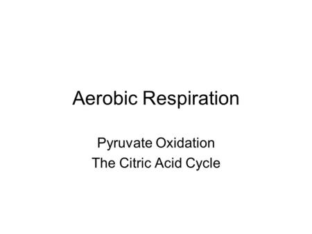 Pyruvate Oxidation The Citric Acid Cycle