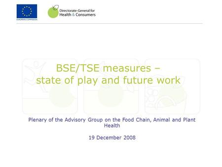 BSE/TSE measures – state of play and future work Plenary of the Advisory Group on the Food Chain, Animal and Plant Health 19 December 2008.