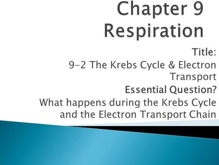 Chapter 9 Respiration Title: 9-2 The Krebs Cycle & Electron Transport