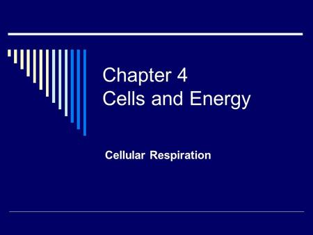 Chapter 4 Cells and Energy Cellular Respiration. Cellular respiration  Process by which food molecules are broken down to release energy  Glucose and.