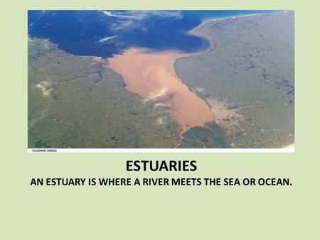 ESTUARIES AN ESTUARY IS WHERE A RIVER MEETS THE SEA OR OCEAN.