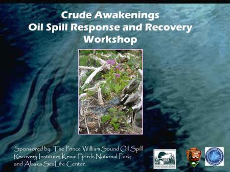 Crude Awakenings Oil Spill Response and Recovery Workshop Sponsored by: The Prince William Sound Oil Spill Recovery Institute; Kenai Fjords National Park;