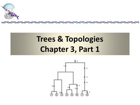 Trees & Topologies Chapter 3, Part 1. Terminology Equivalence Classes – specific separation of a set of genes into disjoint sets covering the whole set.