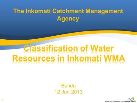 INKOMATI CATCHMENT MANAGEMENT AGENCY The Inkomati Catchment Management Agency 1 Bundu 12 Jun 2013.