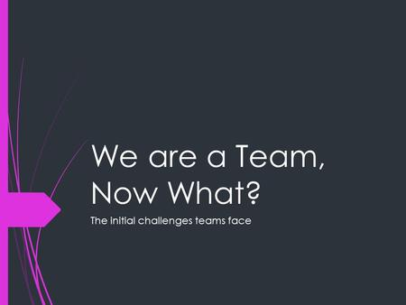 We are a Team, Now What? The initial challenges teams face.