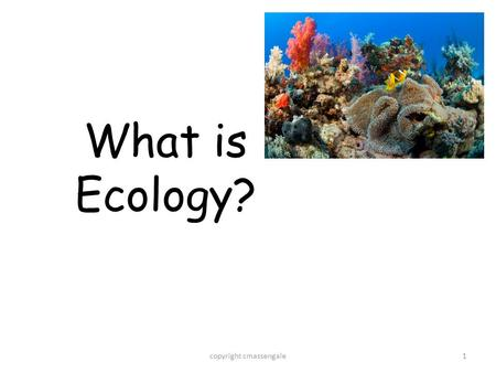 1 What is Ecology? copyright cmassengale. 2 What is Ecology?? The study of interactions that take place between organisms and their environment. The study.