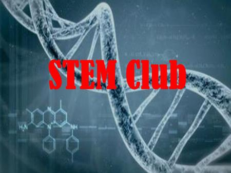 STEM Club. What do we do? Have speakers from STEM fields; past speakers include: Physician Assistants, a bioinformatician, Physicians, college students.