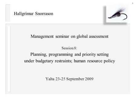 Hallgrímur Snorrason Management seminar on global assessment Session 8: Planning, programming and priority setting under budgetary restraints; human resource.