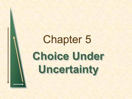 Chapter 5 Choice Under Uncertainty. Chapter 5Slide 2 Topics to be Discussed Describing Risk Preferences Toward Risk Reducing Risk The Demand for Risky.