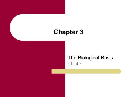 Chapter 3 The Biological Basis of Life. Chapter Outline The Cell DNA Structure DNA Replication Protein Synthesis Cell Division: Mitosis and Meiosis New.