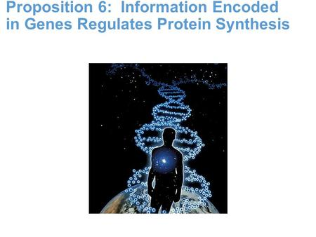 Proposition 6: Information Encoded in Genes Regulates Protein Synthesis.