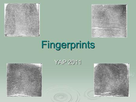 Fingerprints YAP 2011. Ancient Fingerprinting  Chinese used fingerprints in seals by 264BCE  ~1300, Persian Rashid-al-Din Hamadani writes: Experience.