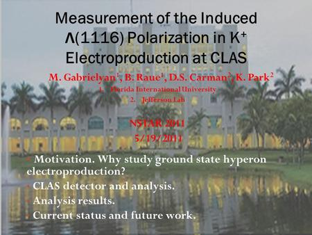 Motivation. Why study ground state hyperon electroproduction? CLAS detector and analysis. Analysis results. Current status and future work. M. Gabrielyan.