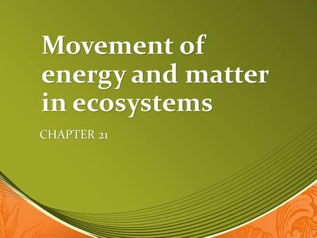 Movement of energy and matter in ecosystems CHAPTER 21.