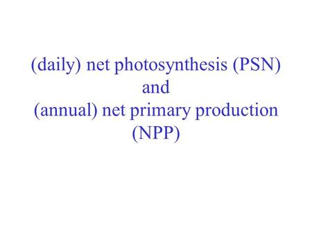 (daily) net photosynthesis (PSN) and (annual) net primary production (NPP)