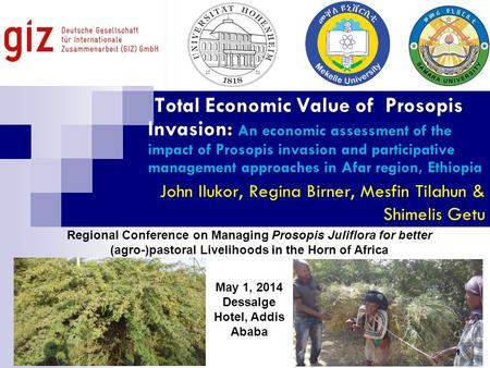 Total Economic Value of Prosopis Invasion: An economic assessment of the impact of Prosopis invasion and participative management approaches in Afar region,