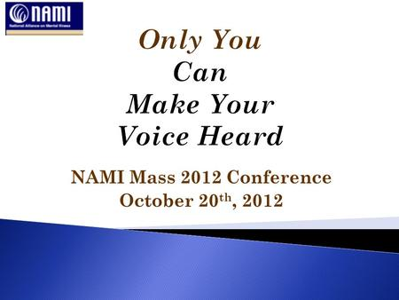 NAMI Mass 2012 Conference October 20 th, 2012. State Representative Jim O'Day (D) West Boylston and Worcester Joe Giannino Government Relations Group,