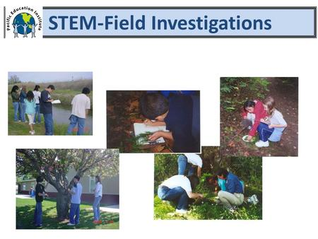 STEM-Field Investigations. 1.Setting the Stage 2.Asking Questions and Defining Problems 3.Planning and Carrying Out Investigations Engaging in Field Investigations.