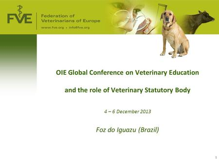 1 OIE Global Conference on Veterinary Education and the role of Veterinary Statutory Body 4 – 6 December 2013 Foz do Iguazu (Brazil)