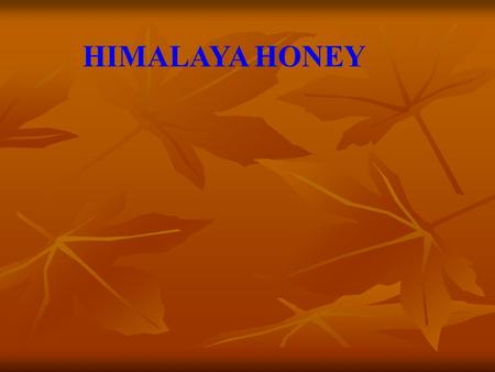 HIMALAYA HONEY. Yojna Starting up a 100 boxes of Italian Bee keeping unit With an investment of 2.5 lakh rupees.