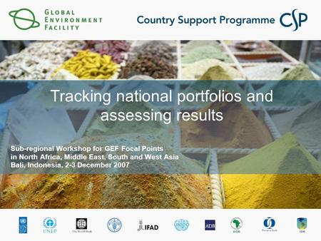 Tracking national portfolios and assessing results Sub-regional Workshop for GEF Focal Points in North Africa, Middle East, South and West Asia Bali, Indonesia,