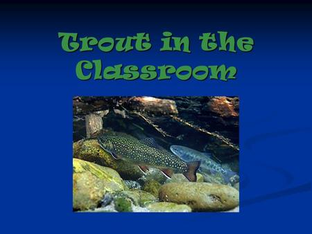 Trout in the Classroom. We will: raise trout from eggs to fry raise trout from eggs to fry monitor tank water quality monitor tank water quality Study.