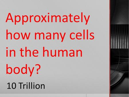 Approximately how many cells in the human body? 10 Trillion.
